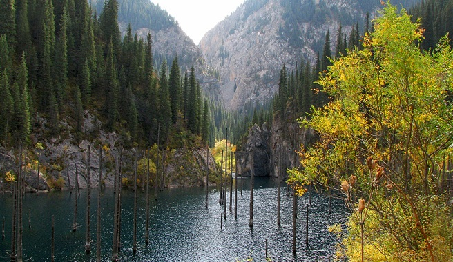 Este singular lago tiene 400 metros de largo lago y alcanza profundidades de cerca de 30 metros en algunas zonas. El lago Kaindy, toda una maravilla de Kazajstán