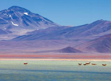 7 Parques Nacionales desconocidos en  Chile que debes visitar.