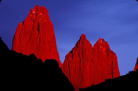 Expertos Trabajan para recuperar Ecosistemas en Torres del Paine