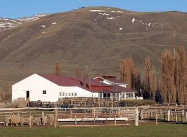 Las fundaciones que intentan salvar a Patagonia (Parte II)